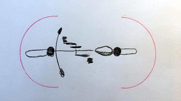 sketch-1.png