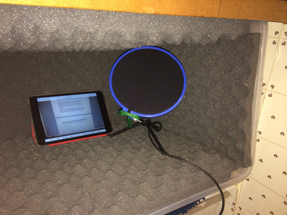 The mic is a Samsung Q2U, with my wife's iPad mini.