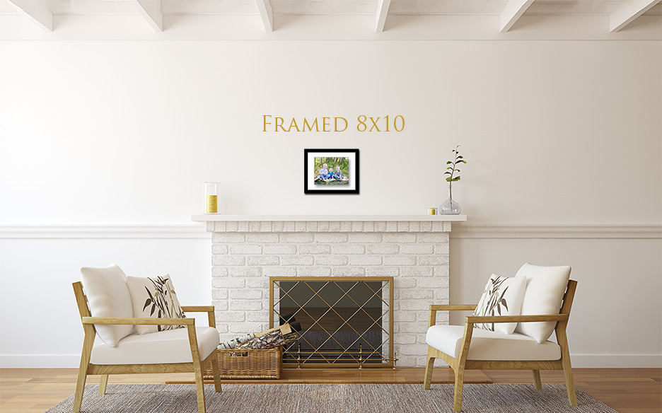 Framed 8x10.jpg