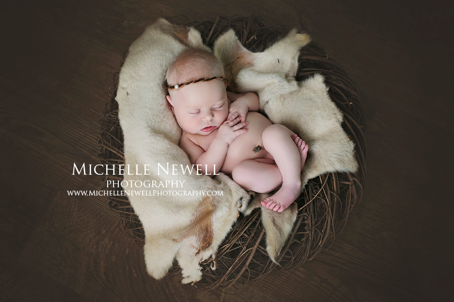 Bellevue WA Newborn Photographer