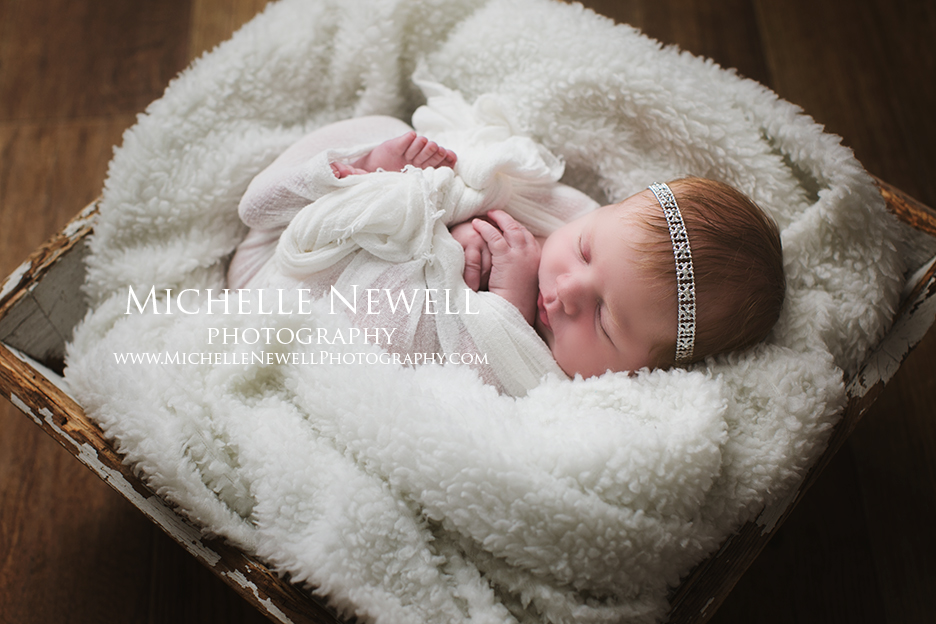 Seattle WA Newborn Photography by Michelle Newell