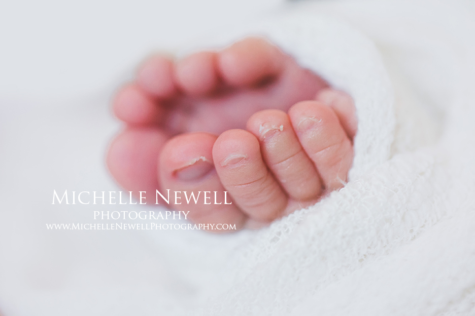 Pacific Northwest Newborn Photographer by Michelle Newell