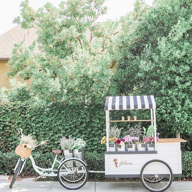 How adorable is this little mobile flower cart?! 😍🚲🙊🌸 // #Repost @floraflowercart // #nantucketbikebaskets #bikebasket #bike #bicycle #gobybike #floraflowercart #clovis