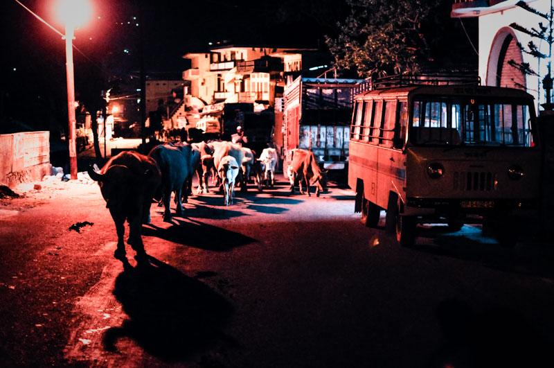 Moving through Uttarkashi at night.