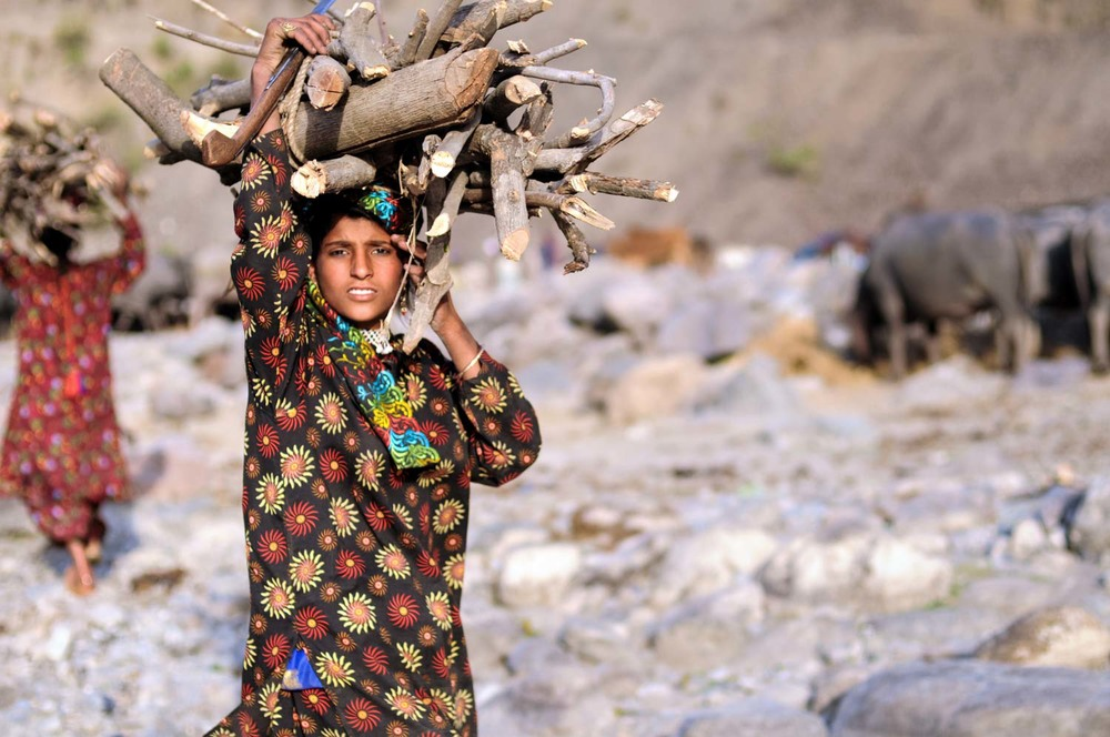 Mariam hauls firewood back to camp along the Yamuna.