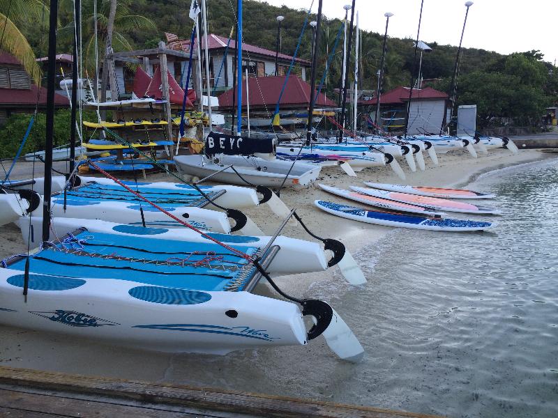 BEYC boats.jpg