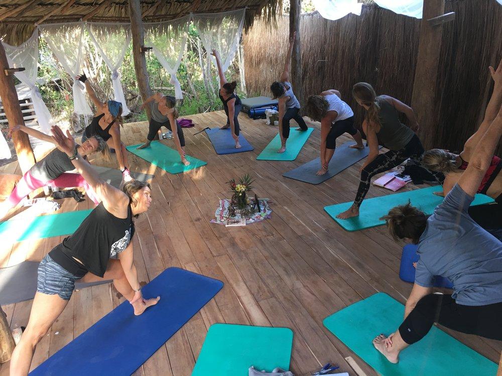 Land Yoga.jpg