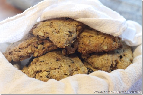 Oatmeal Cookie Scones
