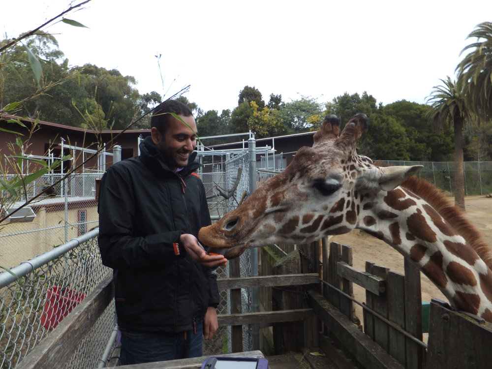 Chirag with a Giraffe at The Oakland Zoo in California, USA.