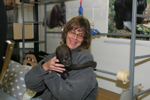 Susan with a Baby Gorilla