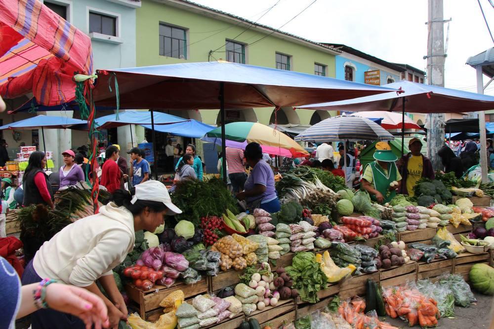 Ecuador Page - Solangqui Market.jpg