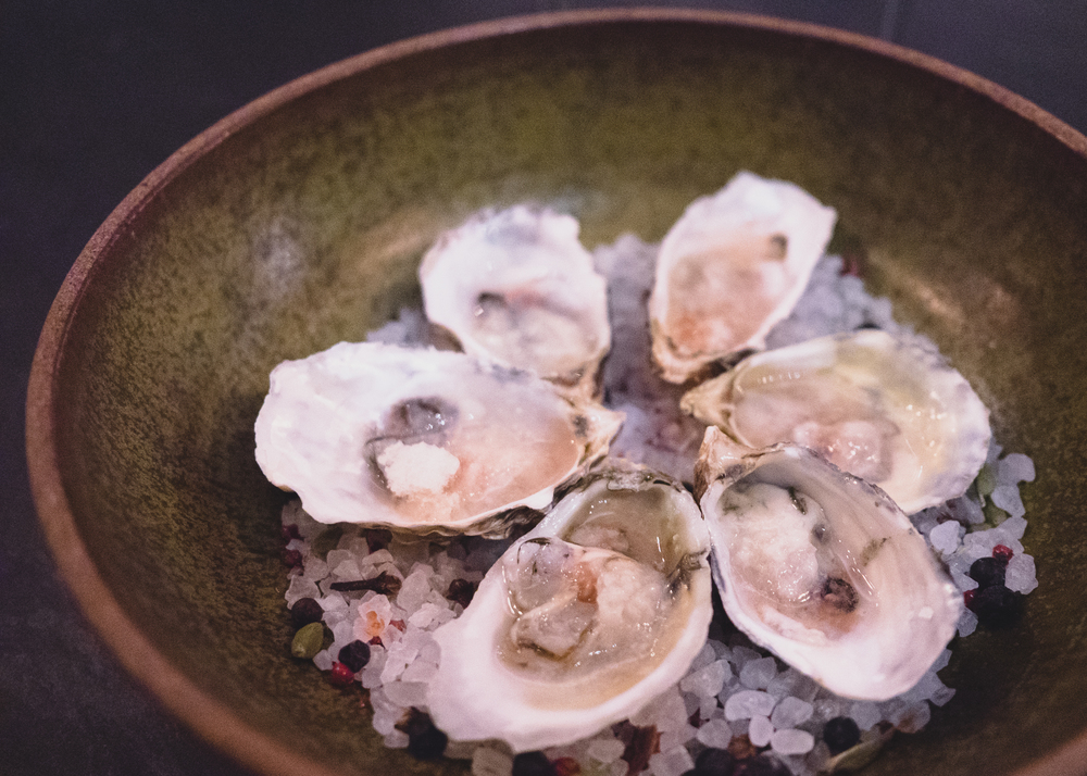 oysters with shallot mignonette and horseradish.