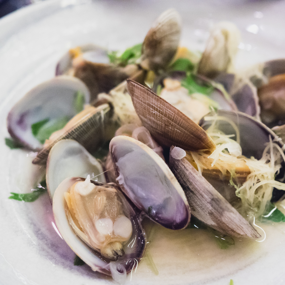steamed manila clams  with ginger.