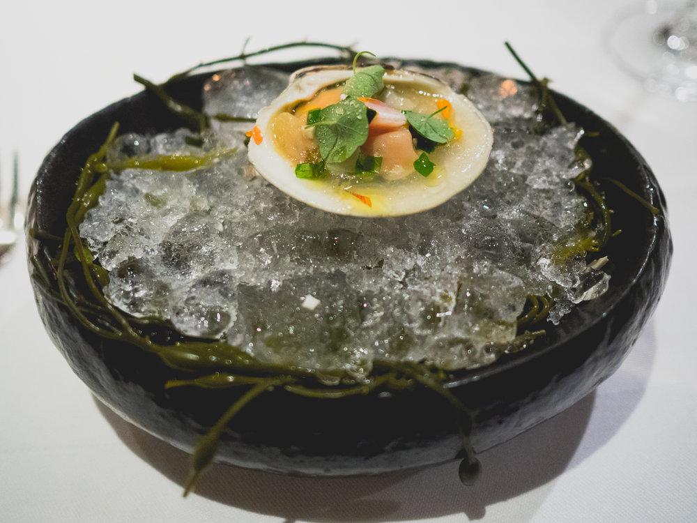 clams & nasturtium.