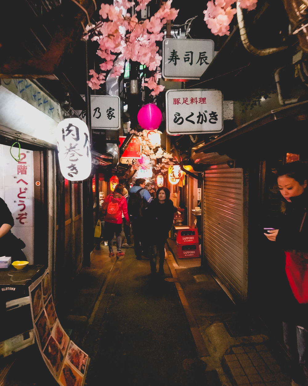 yokocho (food alley) under the train tracks at shinjuku.