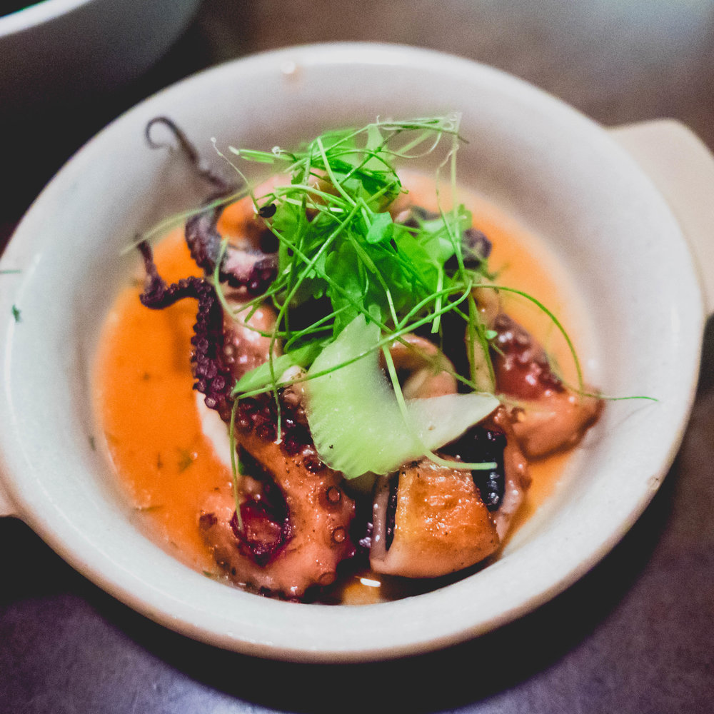 spanish octopus  with creamy butterbeans & chile vinaigrette.