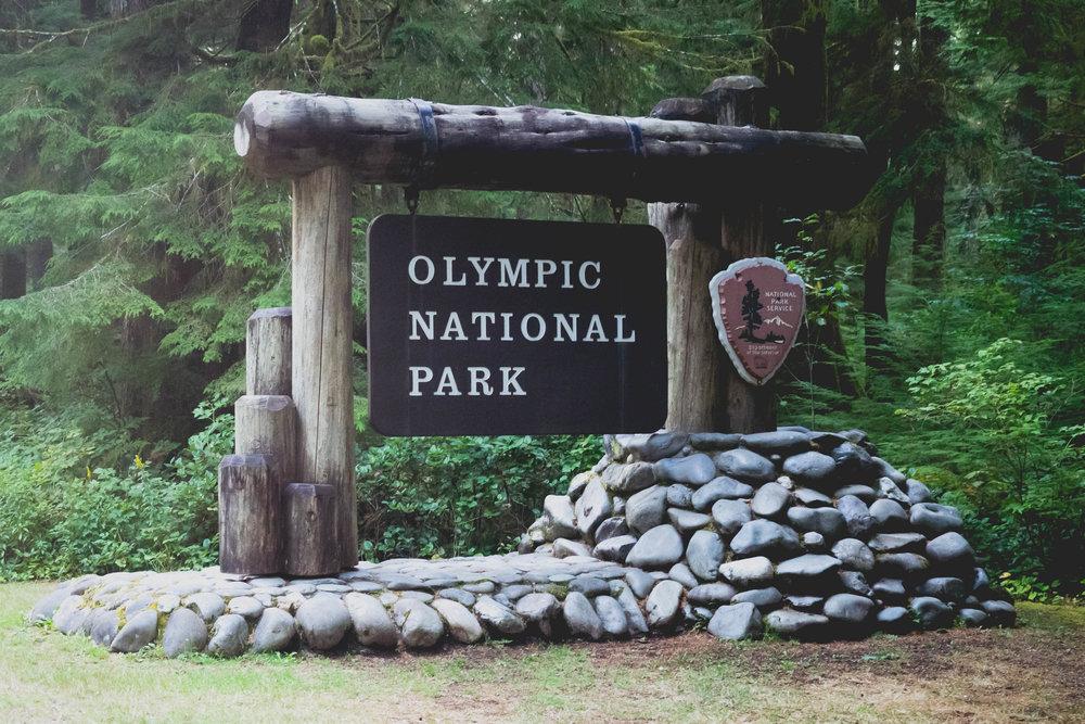 olympic-national-park-101.jpg