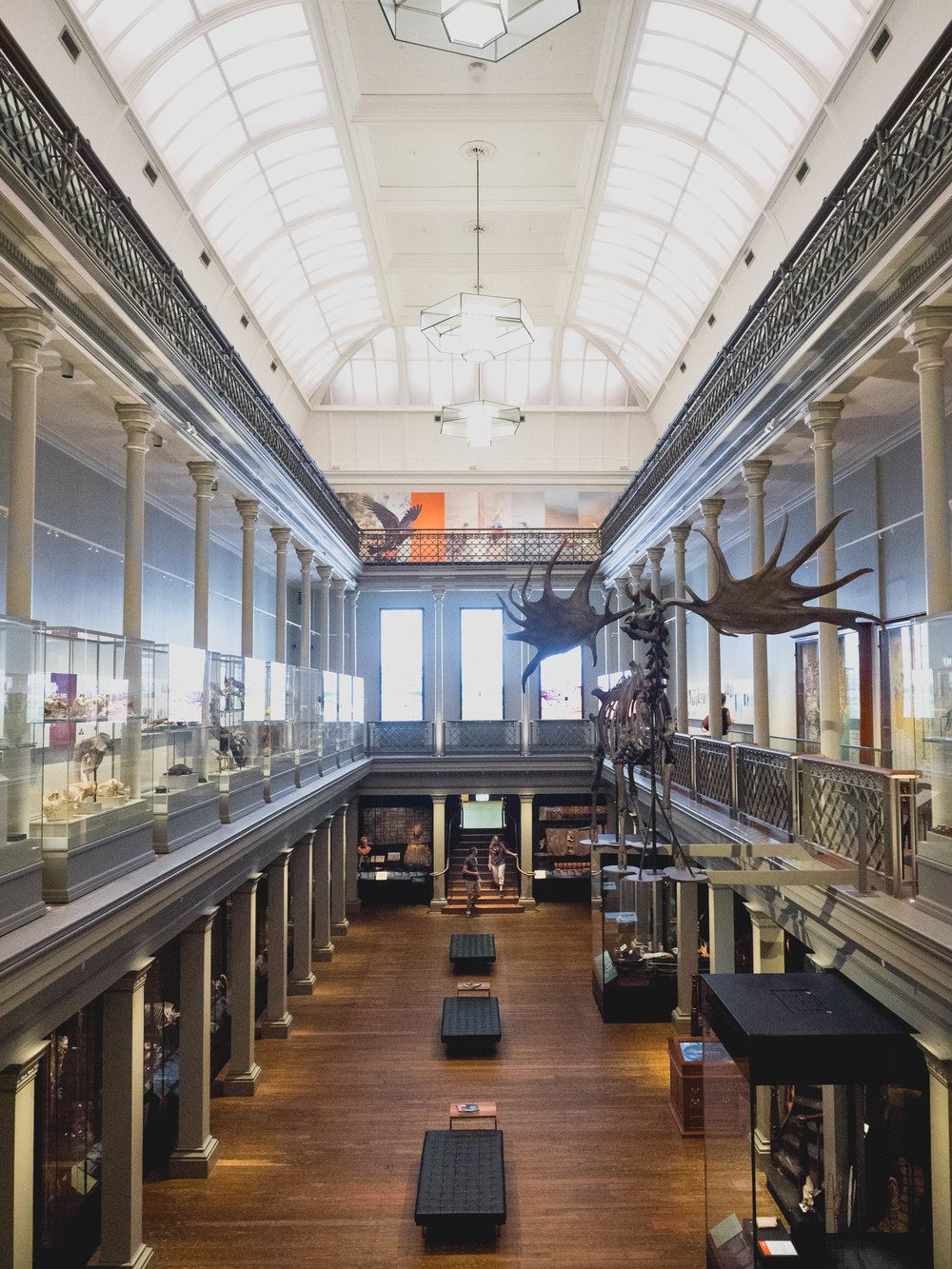 200 treasures of the australian museum.