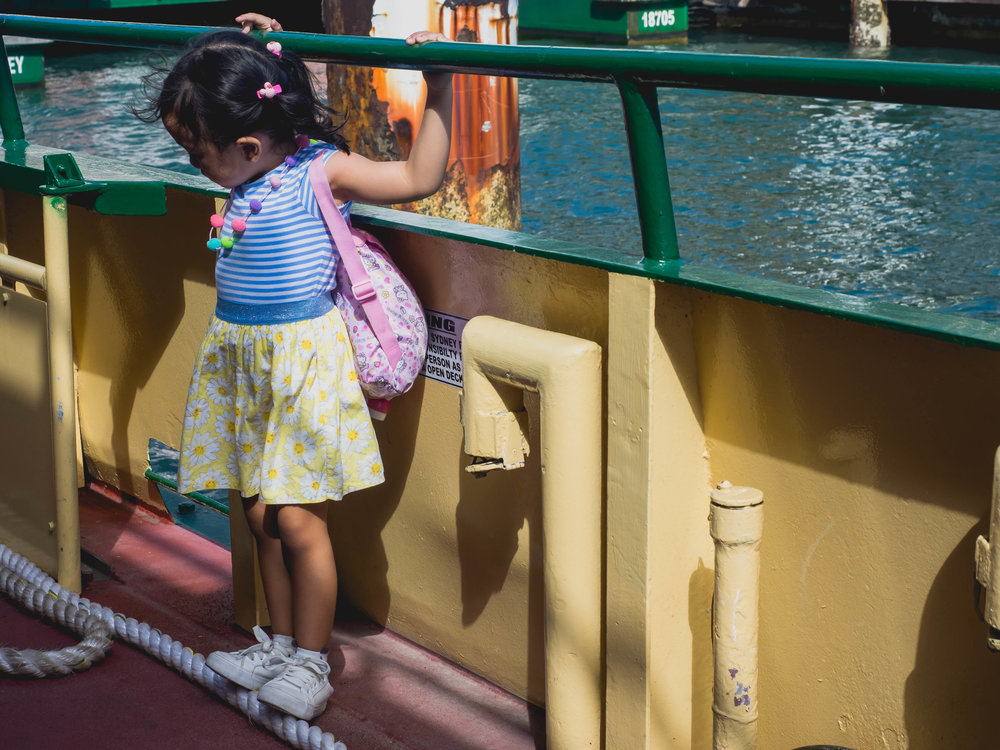 tiny ferry passenger.