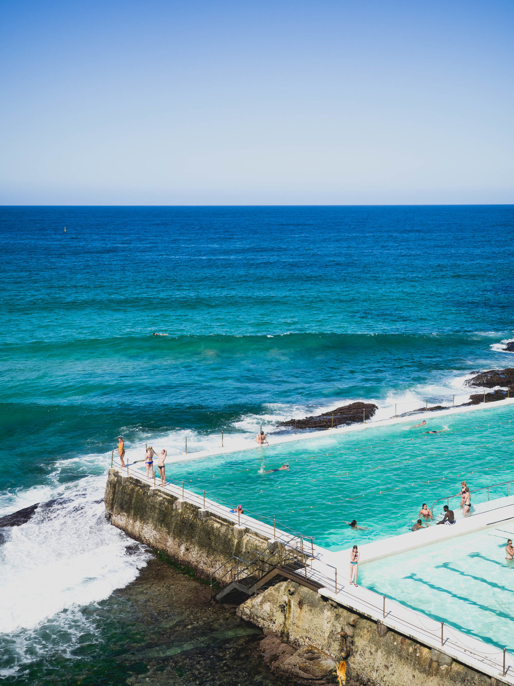 bondi icebergs swim club.