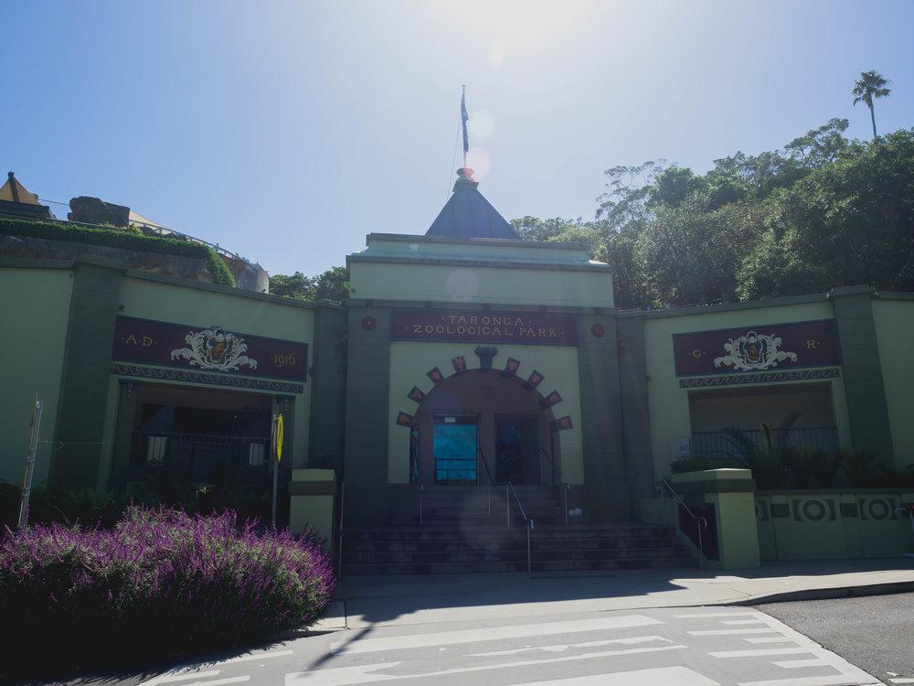 taronga zoo!