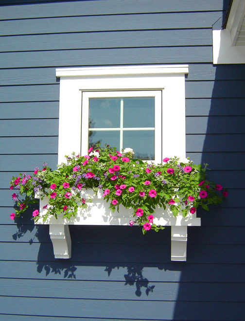 blue_hs_windowbox.jpg