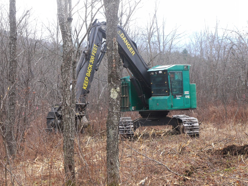 Brontosaurus cuts down an overgrown area of ACT's MacCornack-Evelyn Forest in Sugar Hill in 2012. Nw growth that is better for woodcock is now growing.