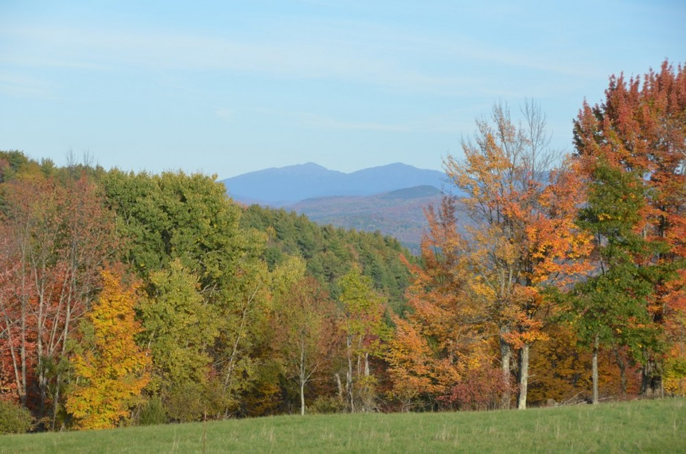 White Mountains from the Godfrey land.
