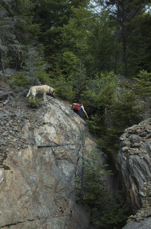 Huge splits in the bedrock near the Paddock Mine.