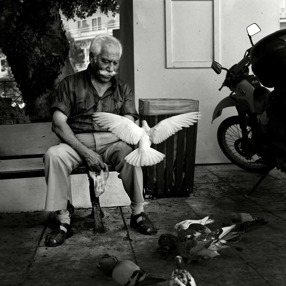 Travel-Birdman
