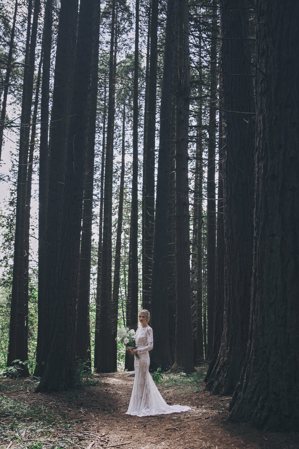 A whimsical styled wedding in the redwood Forest. Featuring a lace sheath gown, wild flowers and a deep connection. Based In Vancouver, BC. Photography By Mimsical Photography | Dress Designer: Calla Blanche | Bridal Boutique: Everything But the Groom | Make up: Jaymie Dekker    #whitewedding #casualwedding #bohemianwedding #woodlandwedding #lacegown #sheathgown #white #whitebouquet #wildflowerbouquet #messyupdo #relaxedupdo #redlips #babysbreath #dahlia #wedding #bride #groom #bridalportrait #emotionalphotography #connectionphotography #woodland #redwood #trees #musthave #moodywedding #vancouverwedding #vancouverbc #weddingdress #weddinginspo #bridalinspo #beards #beardedgroom