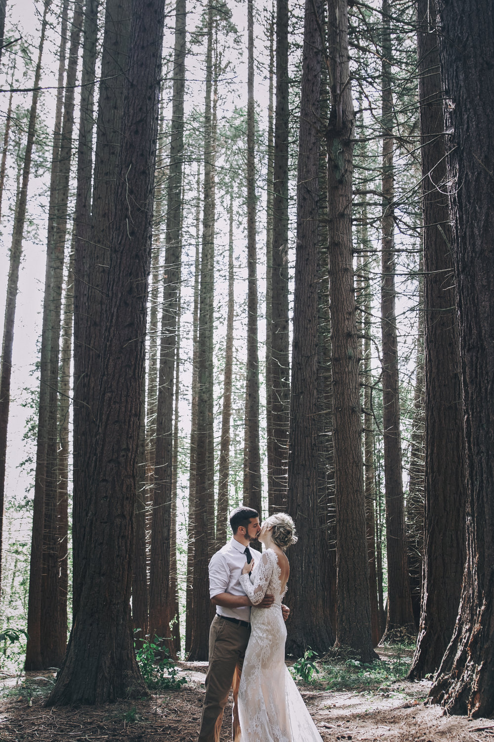 Redwood Wedding