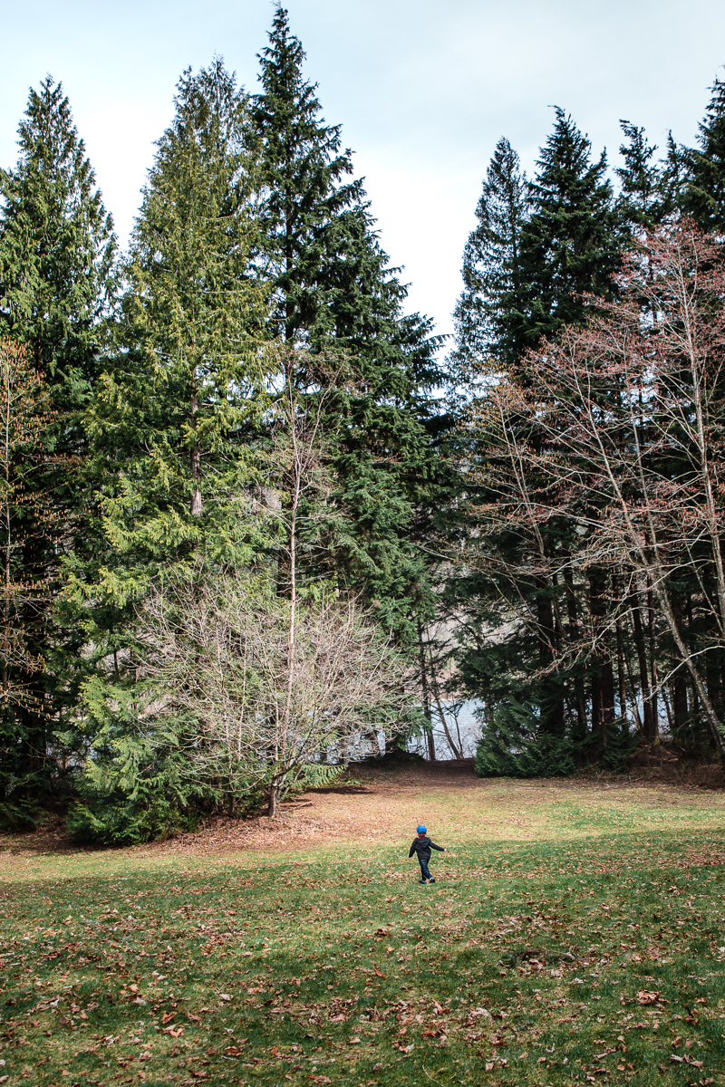 Little boy running through clearing towards pine trees. Sasquatch Park Hicks Lake Camping Engagement Session Plaid Fishing Child Forest Fun Candid Documentary-61.JPG