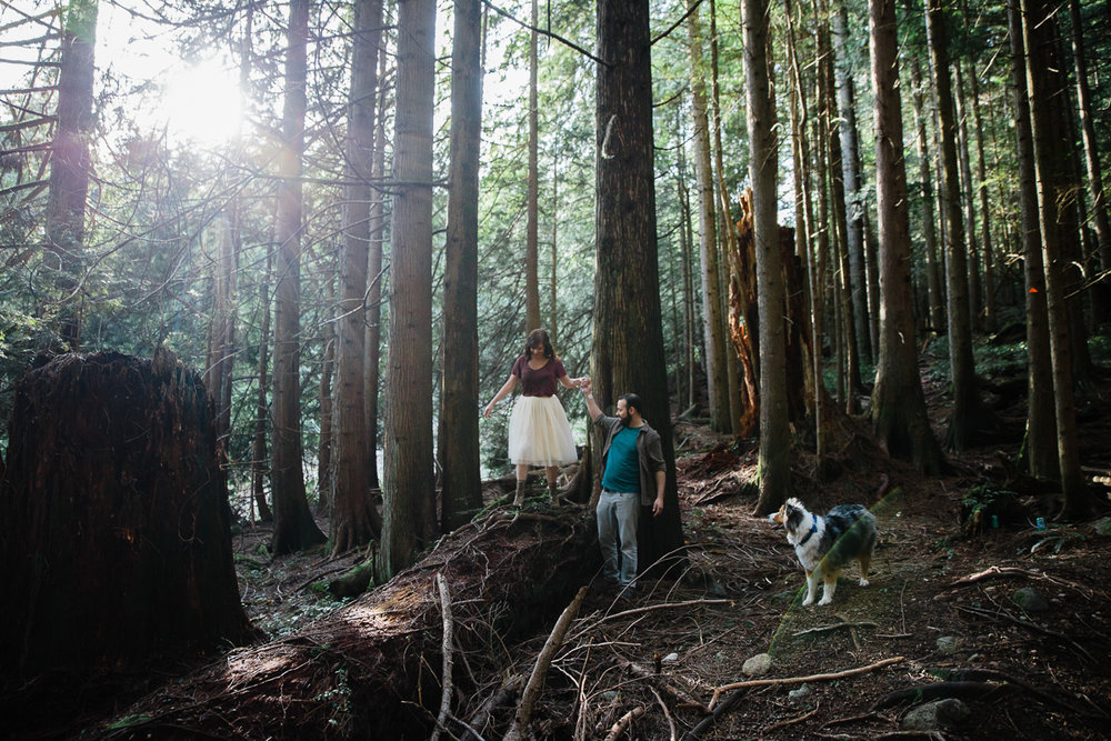 Man holds hand of woman walking across a log while sheltie dog watches from the side in a romantic fairytale setting during their engagement photography session with Mimsical Photography in their backyard forest on the side of north vancouver mountain on a sunny day.
