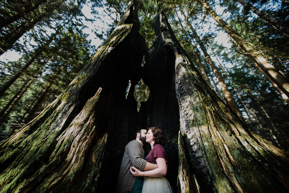 couple standing in old tree in a romantic snuggling pose during their engagement photography session with Mimsical Photography in their backyard forest on the side of north vancouver mountain on a sunny day. wide angle canon lens