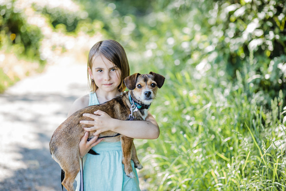 Little girl holding small terrier dog   during a Family Photography session at Aldergrove Bowl Provincial park in Abbotsford, British Columbia on a spring day  #vancouverfamilyphotographer #metrovancouver #candidfamilyphotos #lifestylefamily by mimsical photography christina voorhorst