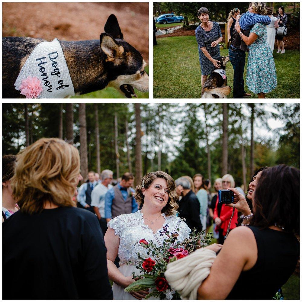 Aldergrove Park Fall Backyard Wedding Photographer Pregnant Bride Tent Outdoor BC Canada Best Wedding Photographer_0039.jpg