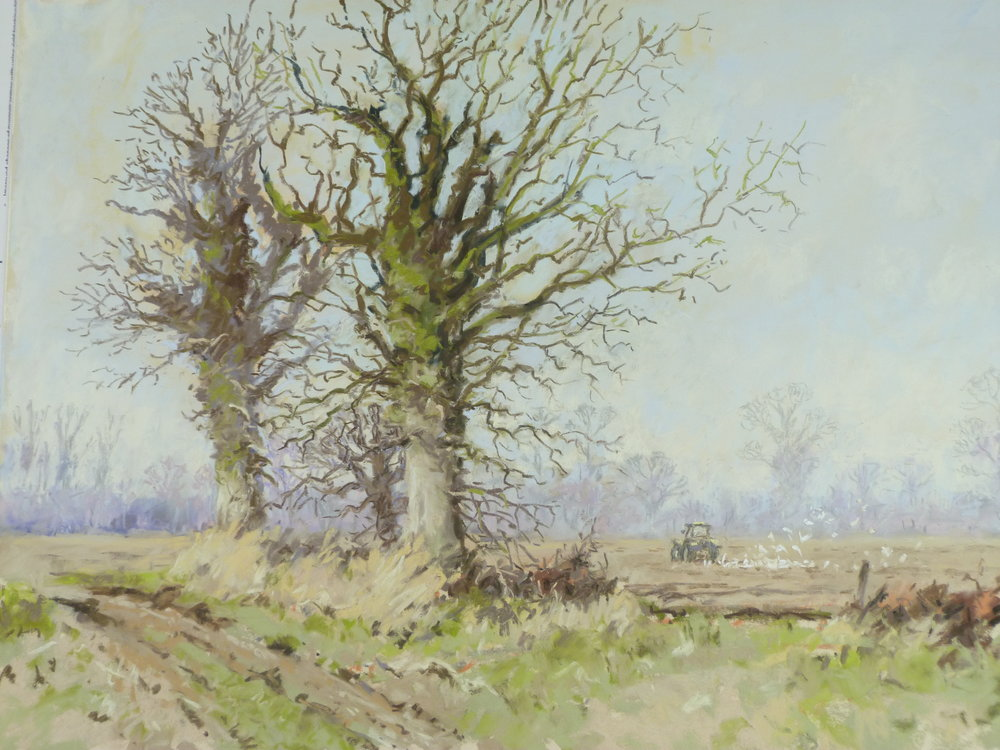 SPRING PLOUGHING: 13.5 x 19 in: pastel