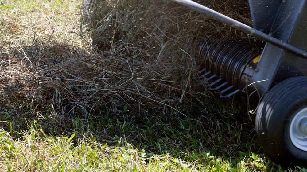 haying-5.jpg