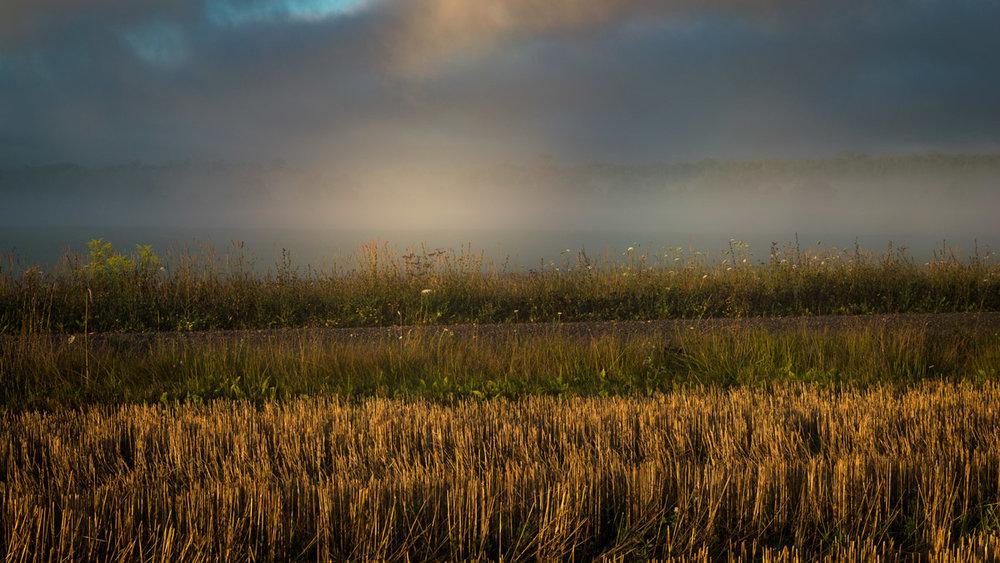 Sunrise-Mist-July-2016-93.jpg