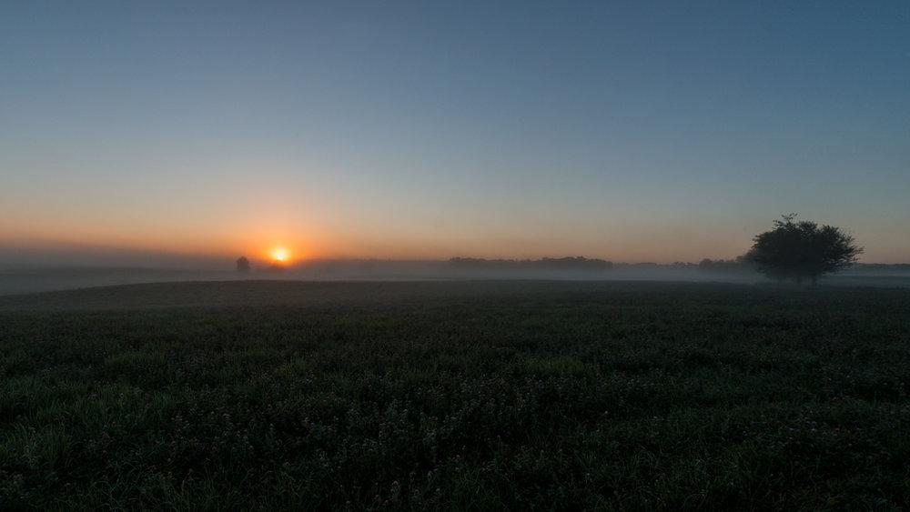 Sunrise-Mist-July-2016-56.jpg