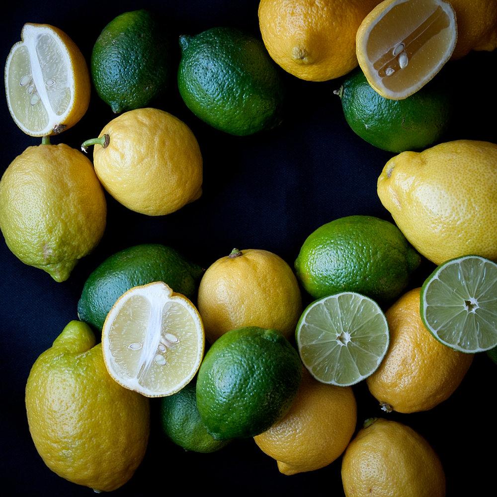 citrus-LG.jpg