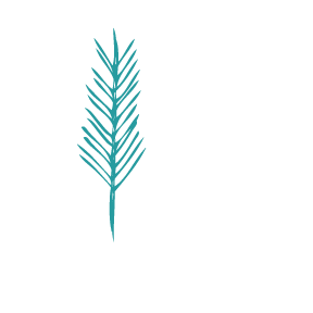 Rise Performance Coaching