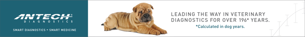 ANTECH Diagnostics Banner Ads
