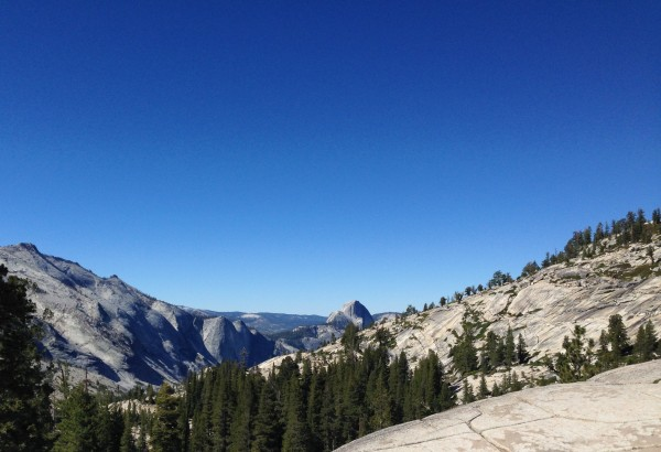 A view of the backside of Half Dome in Yosemite.