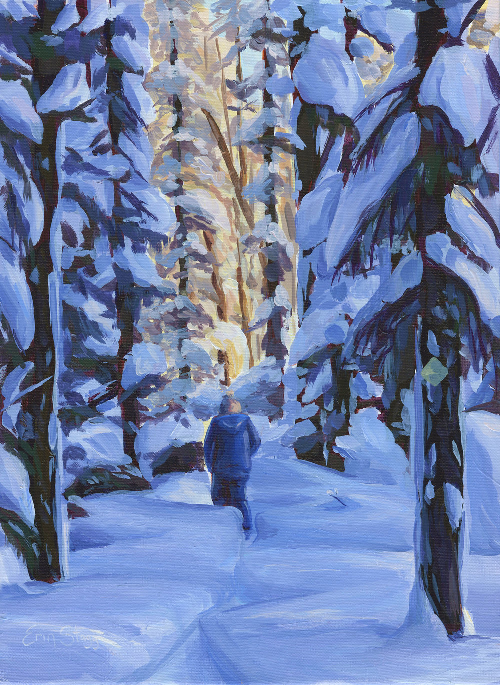 Snowshoeing through the pines - sm.jpg