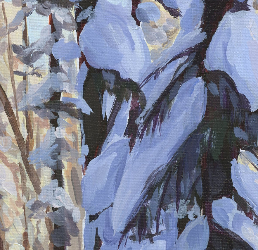 Snowshoeing through the pines - closeup 1.jpg