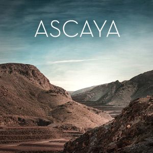Ascaya   →    for SelectNY