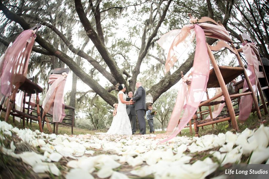 Mismatched wood chairs accented with organza sashes lined the ceremony aisle leading to the great oak tree.