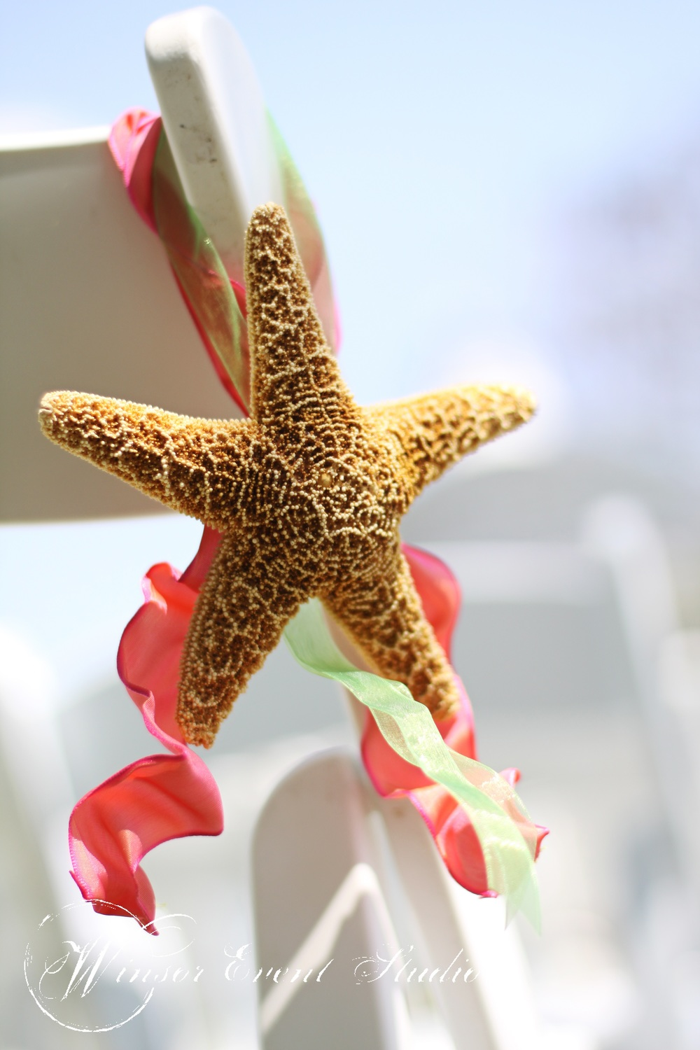 Starfish suspended with colorful ribbon lined the ceremony aisle